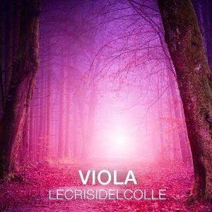 """Le Crisi Del Colle """"Viola�"""